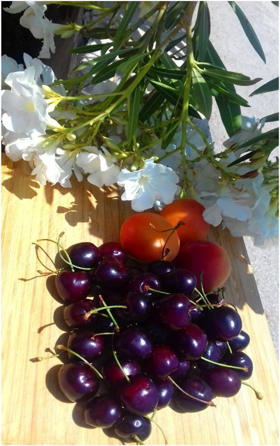 Гид по кухне Апулии - южного региона Италии